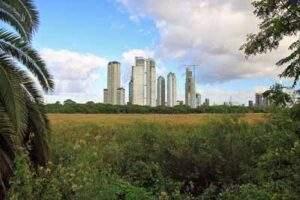 Reserva Ecológica: Buenos Aires y el modelo marplatense 2006