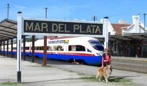 trenes02