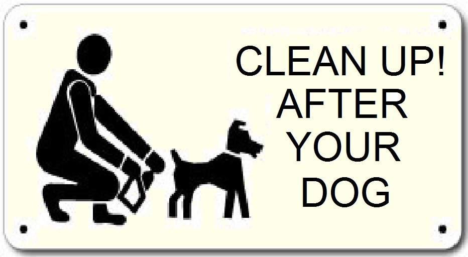 BA Elige: Otras propuestas por mascotas
